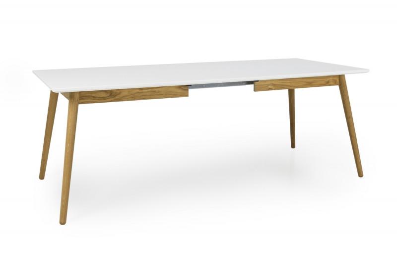 DOT Spisebord vist med 1 tillægsplade